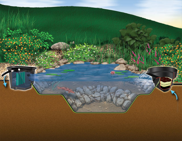 Aquascape Diy Backyard Pond Kits Aquascapes