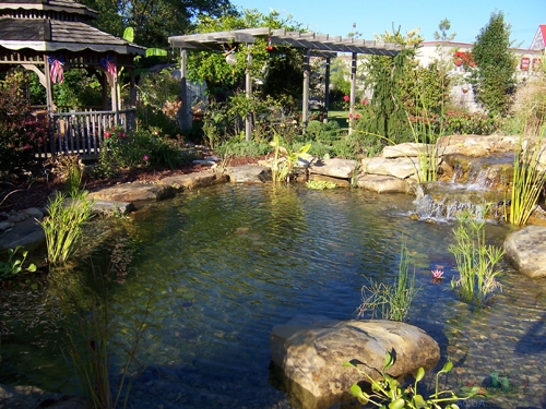 Project image gallery aquascapes for Small pond construction