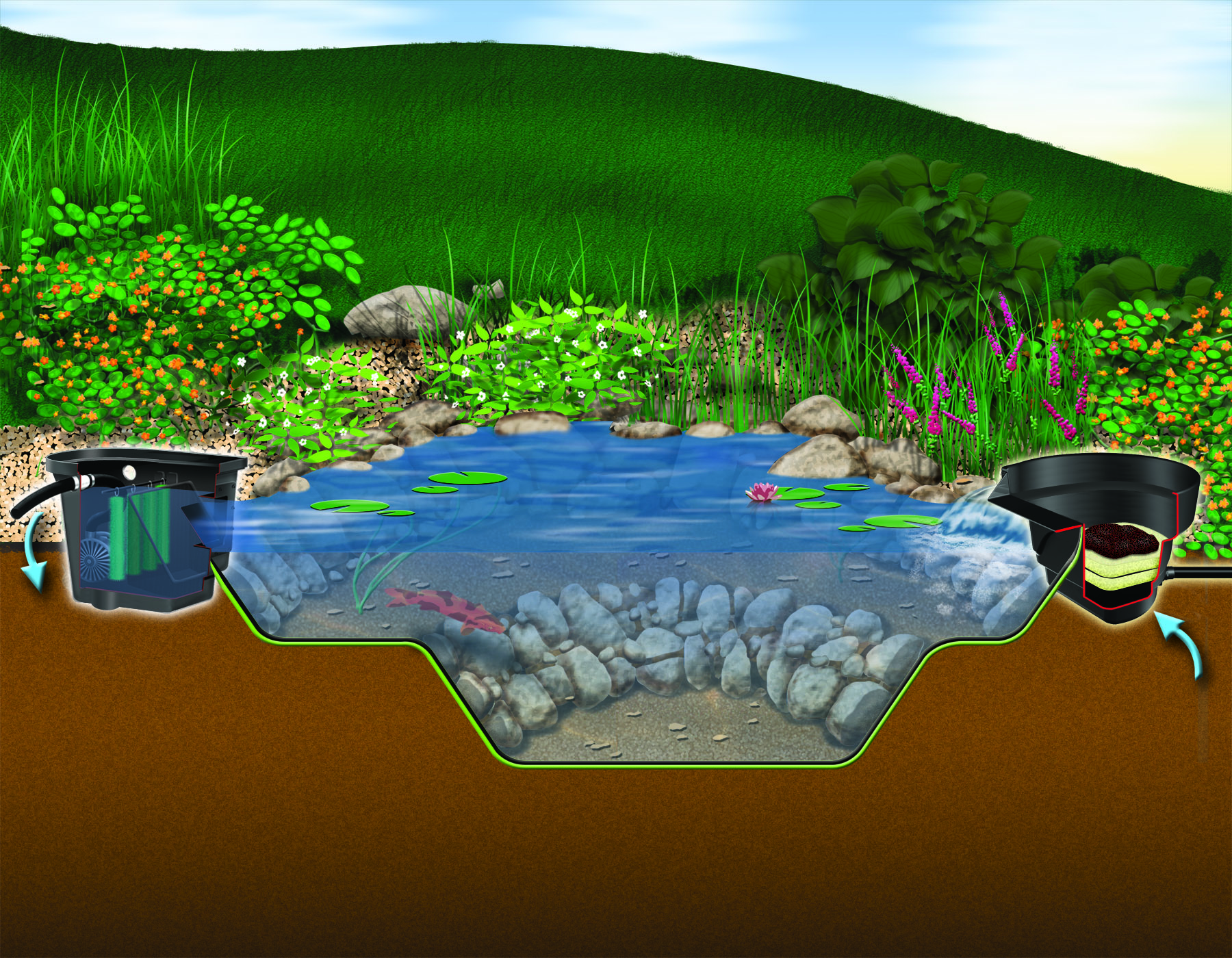 Aquascapes Pond Water Garden Installation