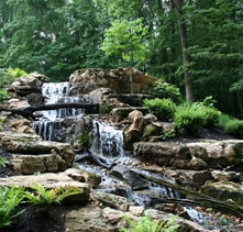Aquascapes Pond Amp Water Garden Installation