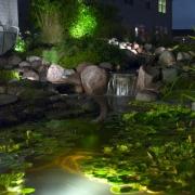 water garden filtration