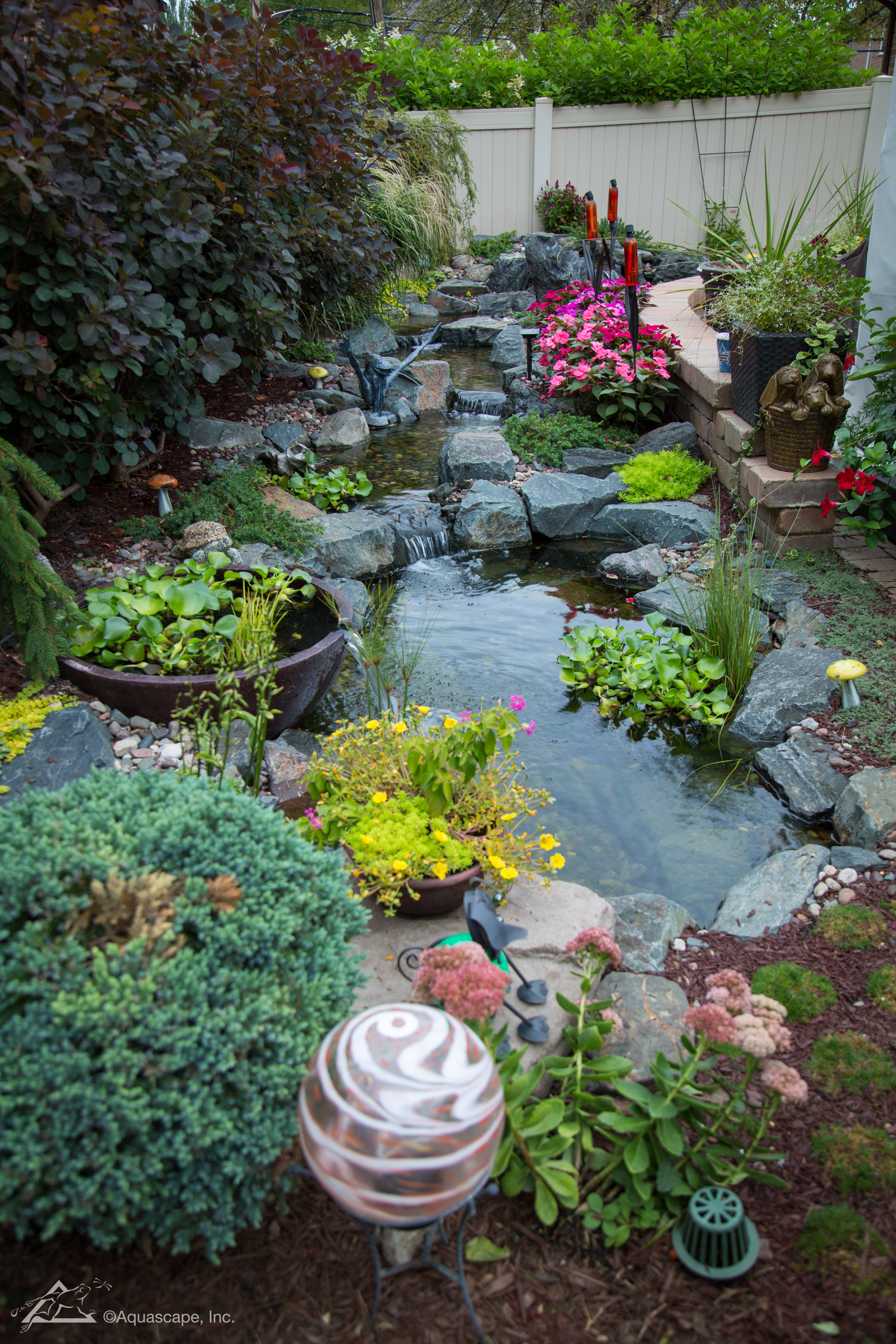 Backyard Ponds Water Features Water Gardens By Aquascapes