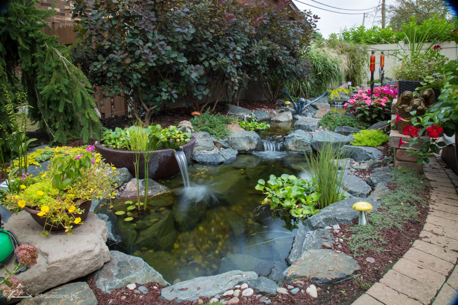 Top 5 Water Garden Supplies To Keep On Hand Year Around