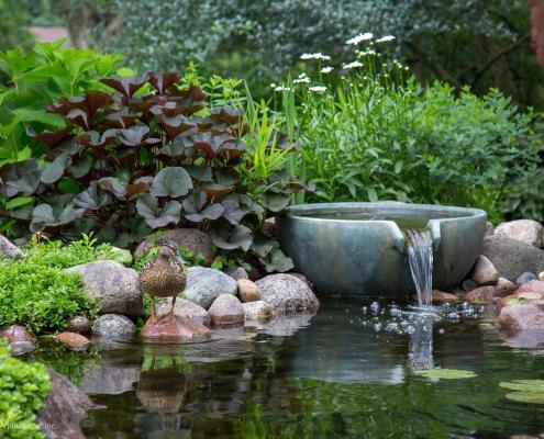 Water Garden Tools