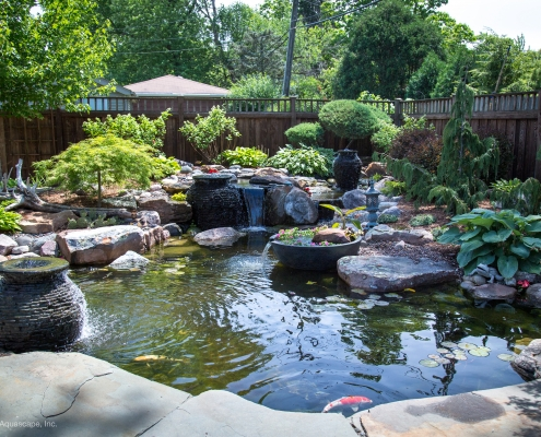 how to grow beneficial bacteria for ponds