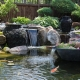 water garden pond pump