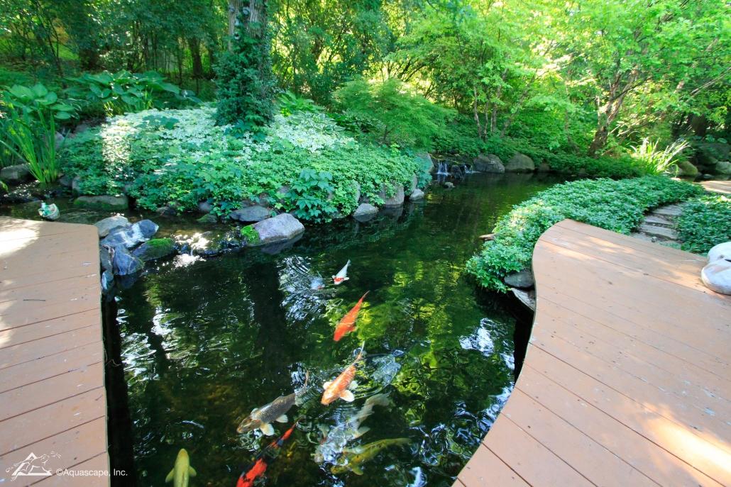water garden construction